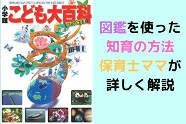 【保育士直伝】小学館キッズペディア子供大百科を使った図鑑の効果と活用法