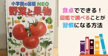 小学館の図鑑neo野菜と果物 図鑑で知的好奇心が旺盛な子どもに!