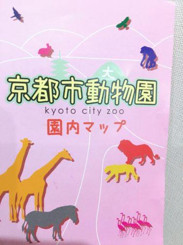 東山・岡崎 京都市立動物園 子供と行くポイントや注意点は?