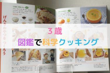 3歳子どもと食育 手作りお菓子おせんべい作り 図鑑を見ながらクッキング