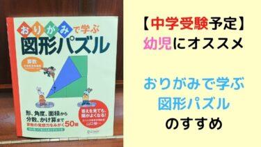 【中学受験予定】の幼児に『折り紙で学ぶ図形パズル』が効果的な理由